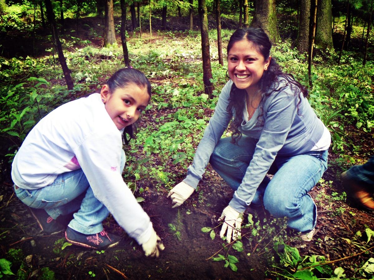 Por qu debemos plantar un rbol con los ni os estilo for Como crecen los arboles para ninos