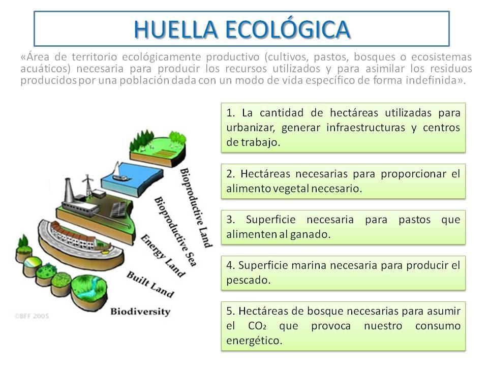 Sustentabilidad estilo verde for Tecnologia sostenible