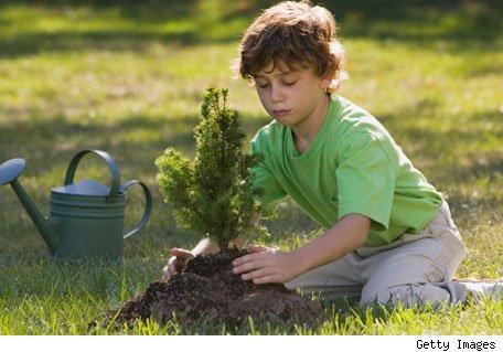 Naturaleza estilo verde - Como cuidar un jardin ...